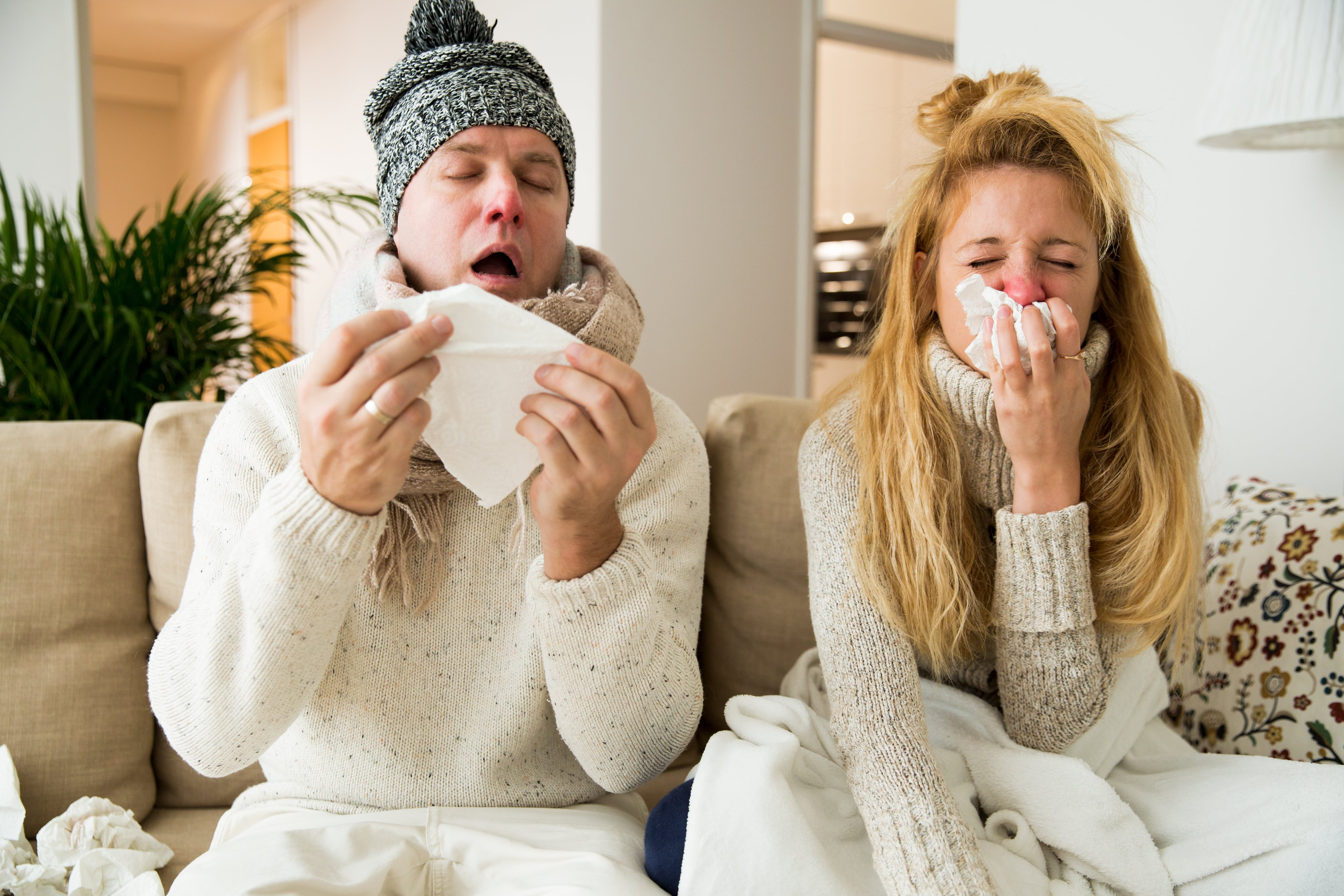 A sick couple sitting on the couch in sweaters blowing their noses and coughing